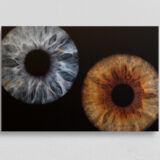 irisfotografie doppel alu-dibond direktdruck