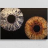 irisfotografie doppel alu-dibond gebuerstet