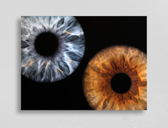 irisfotografie-wandbild-doppel-fotodruck-ohne-namen