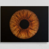irisfotografie einzel alu-dibond matt