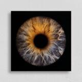 irisfotografie einzel quadrat acryl-glas